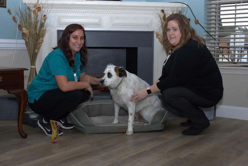 Two staff members with resident dog